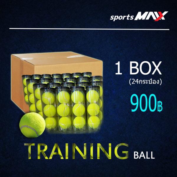 Trainning Needle Ball